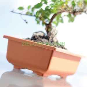 Doniczka Do Bonsai DBON 20CM