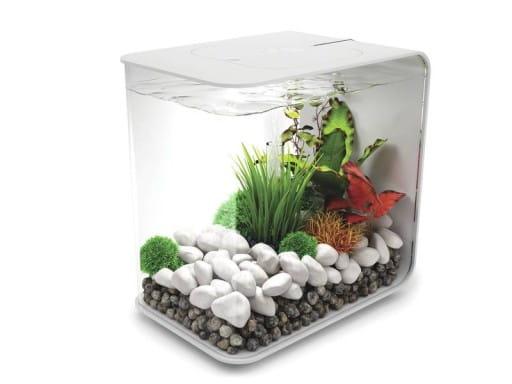 akwarium biorb 15 led biały